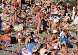 Find the Cat in the Beach Crowd Revealed