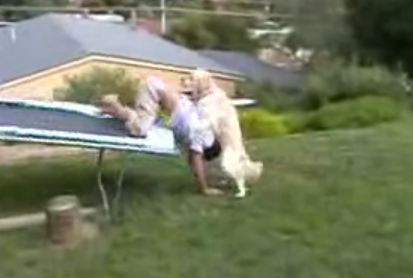 Still from video of dog humping man who fell off trampoline
