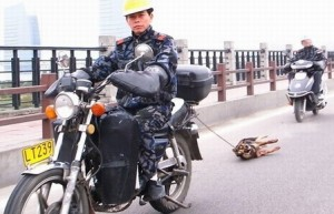 Man Dragging Dog Behind Motorcycle in China: Real or Hoax?