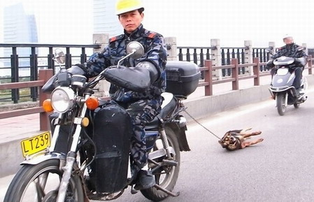 Man Dragging Dog Behind Motorcycle in China