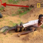 Boy Attacked by Snake as Photographers Watch. Real or Hoax?