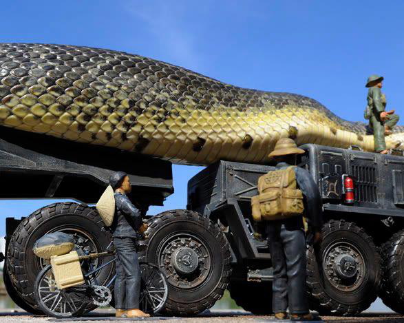 Largest Real Snake In The World