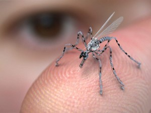 Does This Photo Show a Robotic Spy Mosquito?