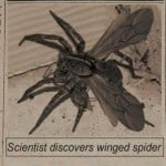 Winged-Spider-Fake