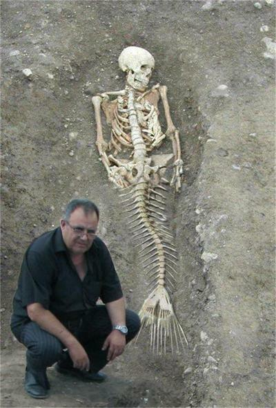 Fake mermaid skeleton