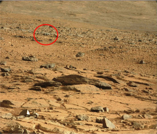 nasa mars lizard - photo #4