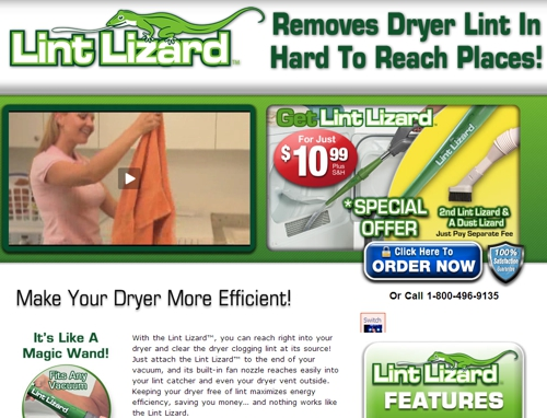 This is a screen shot of the official Lint Lizard website, taken in July 2013.