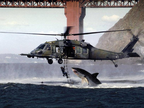 Fake photo of shark attacking helicopter