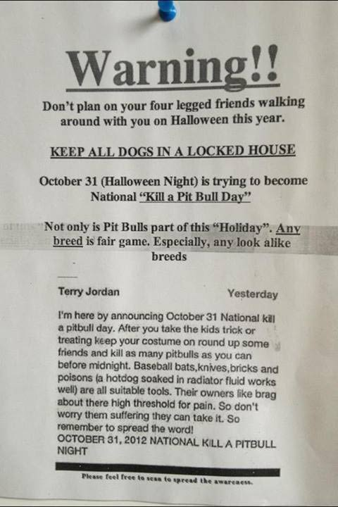 Pitbull Warning Flyer