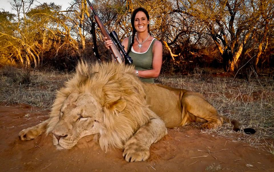 Melissa Bachman Lion Photo