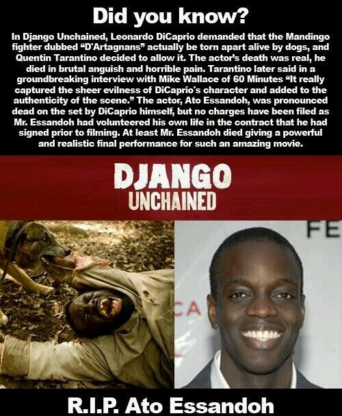 Django Unchained Actor Ato Essandoh Killed by Dogs?