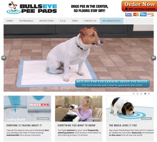 Bullseye Pee Pads website screenshot
