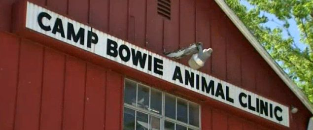 Camp Bowie Animal Clinic
