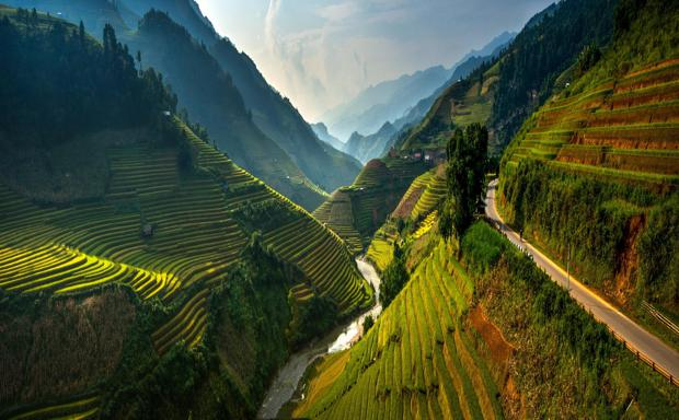 terraced hills of vietnam