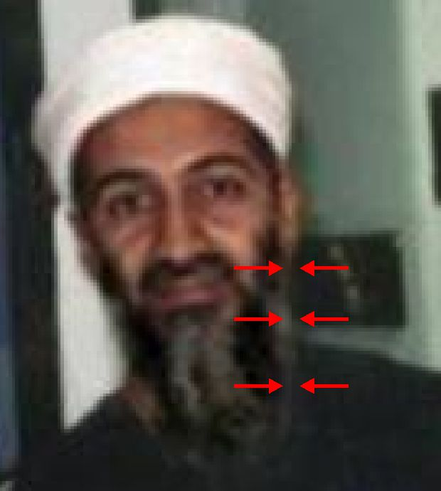 fake osama beard