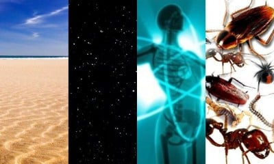 sand vs stars vs atoms vs insects